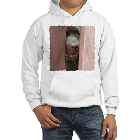 Brown Noser Hooded Sweatshirt