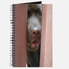 Brown Noser Journal