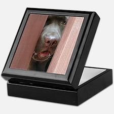 Brown Noser Keepsake Box