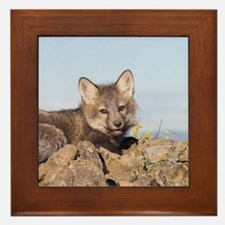 Cross Fox Kit Framed Tile