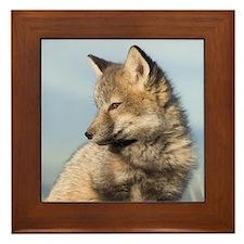 Cross Fox Kit Framed Tile
