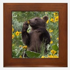 Grizzly Bear Cub Framed Tile
