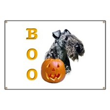 Kerry Boo Banner