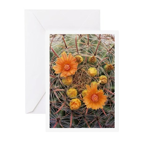 Cactus Flower Greeting Cards (Pk of 10)