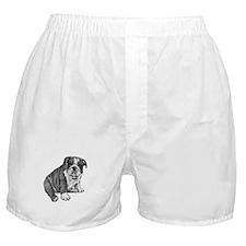 Puppy Drawing Boxer Shorts