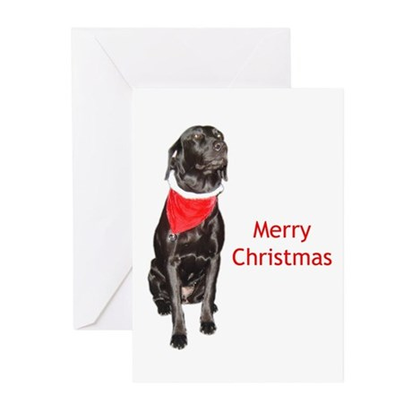 merry Christmas lab Greeting Cards (Pk of 20)
