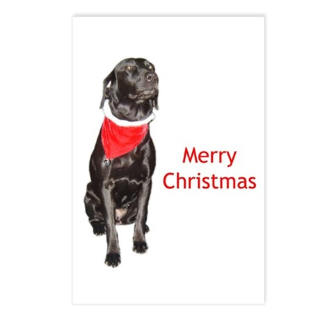 merry Christmas lab Postcards (Package of 8)