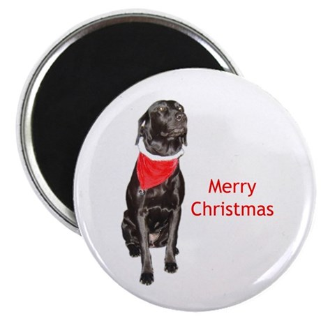 "merry Christmas lab 2.25"" Magnet (100 pack)"