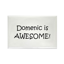 Funny Love domenic Rectangle Magnet (10 pack)