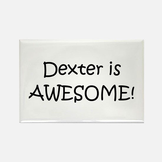 Cute Awesome dexter Rectangle Magnet