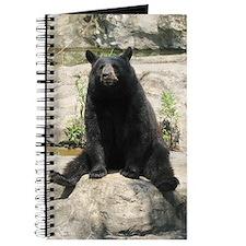 Susan Journal