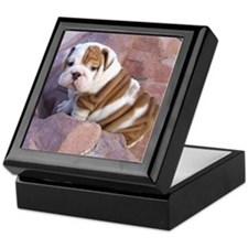 Bulldog puppy Keepsake Box