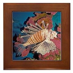 Lionfish Tropical Fish Framed Tile