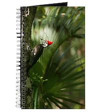 Woodpecker Journal
