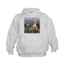 Lufuno the White lion Hoodie