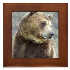 Grizzly Bear Framed Tile