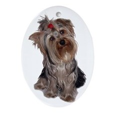 yorkie portrait Oval Ornament