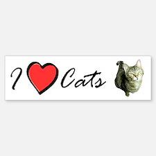 I Love Cats - I Heart Cats Bumper Bumper Bumper Sticker