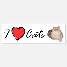 I Love Cats Persian Cat Bumper Bumper Bumper Sticker