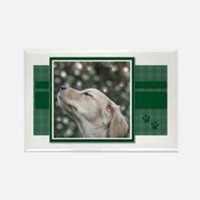 Golden Christmas Wishes Rectangle Magnet