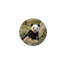 Panda M001 Mini Button