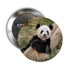 """Panda M001 2.25"""" Button"""