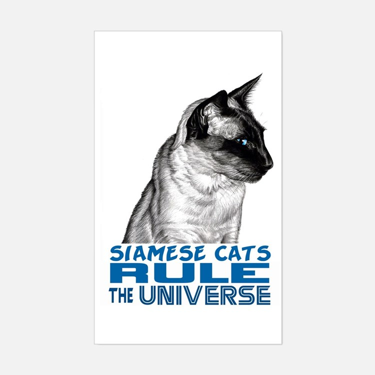 Siamese Universe Rectangle Decal