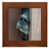Labrador Framed Tiles