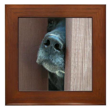 The Nose Knows Framed Tile