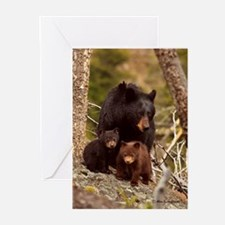 ''Family Portrait'' Greeting Cards (Pk of 10)