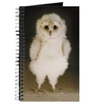 Wesley The Owl 5x7 Journal