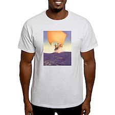 Codadad Ash Grey T-Shirt