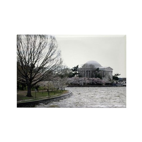Jefferson Memorial Rectangle Magnet (10 pack)
