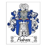 Pedrosa Family Crest Small Poster
