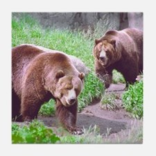Grizzly Bear Brothers Tile Coaster