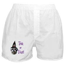 Shih Tzu Trick Boxer Shorts