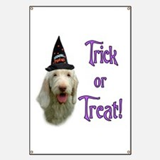 Spinone Trick Banner