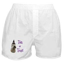 Wheaten Trick Boxer Shorts