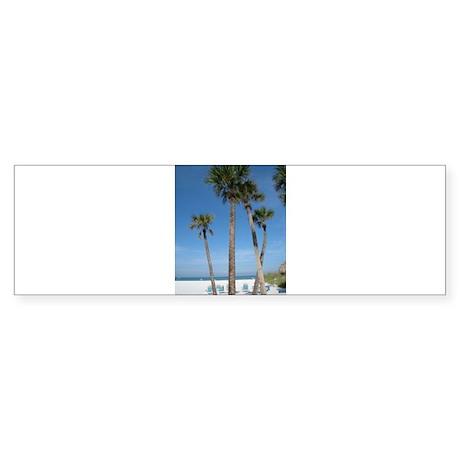 Beach Palms Bumper Sticker