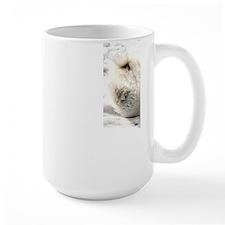 Playful_Baby_Polar_Bear-1600x1200-Bandwidth Mugs