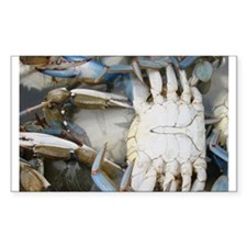 blue crab Rectangle Decal