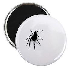 Arachnophobic/Spiders Magnet