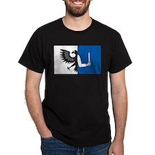 Connacht Flag T-Shirt
