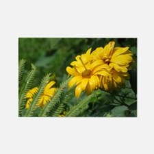 Yellow Daisy Rectangle Magnet