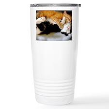 Kitty Rainbow Travel Mug