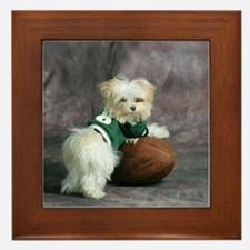 Cute Maltese Puppy Dog with Football Framed Tile