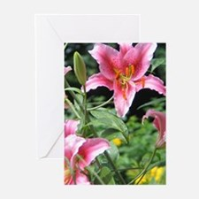 Pink Star Lily Garden Greeting Cards (Pk of 10