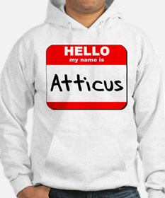 Hello my name is Atticus Hoodie