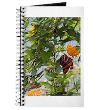 Orange & Black Butterfly Journal