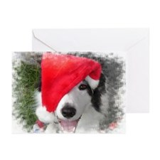 Border Collie with one eye on Santa Greeting Cards
